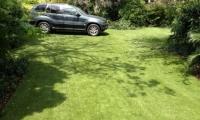 driveway-grass-wrigley-1