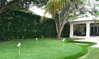 synthetic green north palm beach