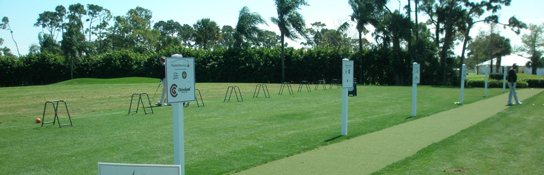 Artificial Grass, Artificial Turf, Astro Turf, Synthetic Turf, Artificial Turf Grass, Golf Tee Lines, Artificial Driving Ranges