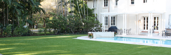 Reasons for Choosing Artificial Grass