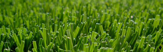 How To Find Quality Artificial Grass Supplier