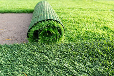 Easy Grass In Florida Best Types Southwest Greens