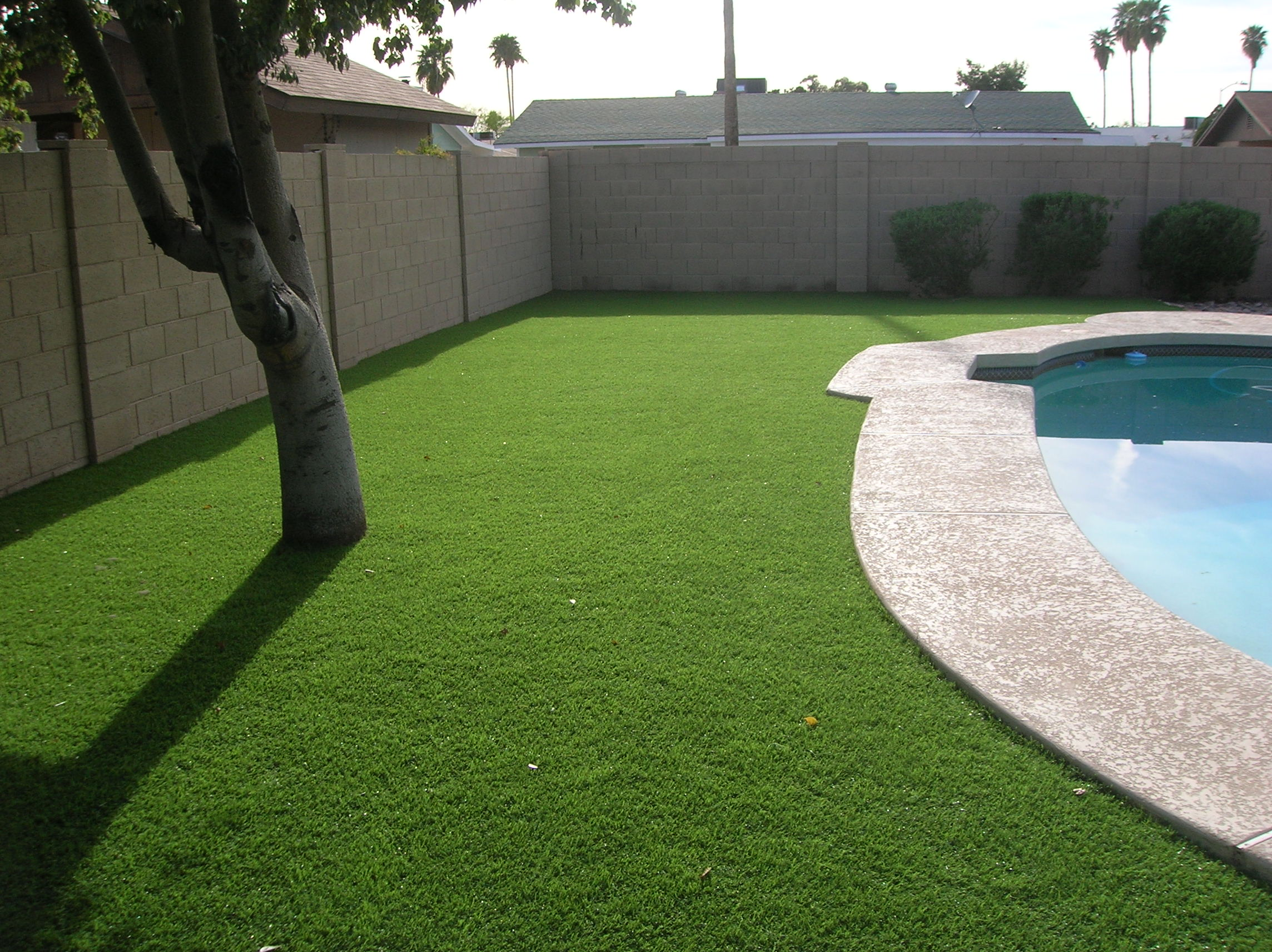 artificial turf in miami new year's resolutions