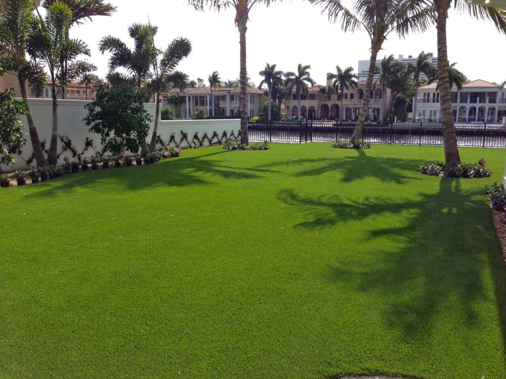 who is the best supplier of low maintenance grass in Florida?