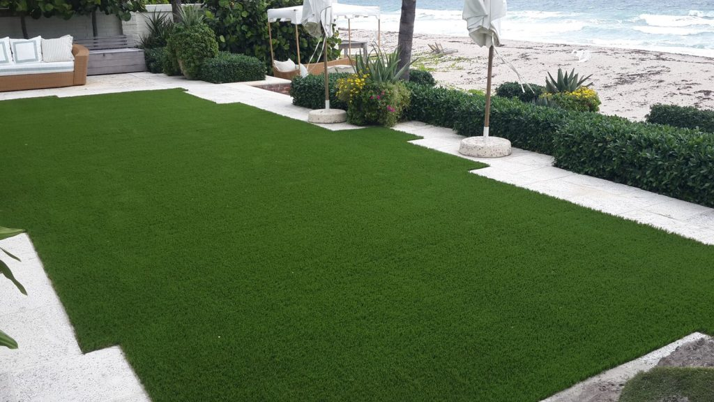 How do I get low maintenance grass in Florida?